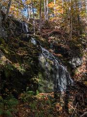 JTLQ3575-HDR.jpg (newminaswilders) Tags: freshwater nature waterfalls fallcolours cambridge novascotia canada ca