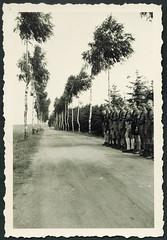 Archiv H273 Hitlerjungen in einer Birkenallee, 1930er (Hans-Michael Tappen) Tags: archivhansmichaeltappen drittesreich nazigermany thirdreich hitlerjunge hj hitlerjugend hjuniform hjkleidung kniestrmpfe landstrase allee birke gruppenbild 1930er 1930s
