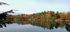 Fall in the Gatineau Parc (M. Carpentier) Tags: fall automne gatineau parc couleurs colors watereau reflection rflection rouge orange red bleu blue