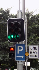 Sydney city NSW Bicycle tracks in roadway 7 (bicycle traffic signal) - Sept 2016 (nicephotog) Tags: sydney nsw road city transport green bicycle track traffic signal lights crossing pedestrian