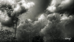 Storm Towers (dougkuony) Tags: storm thunderhead towers clouds mono monochrome bw blackandwhite hdr