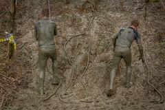Roped in (stevefge) Tags: berendonck strongviking viking mud men event sport obstacles endurance fun people candid nederland netherlands nederlandvandaag reflectyourworld rope slide steep climb