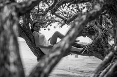 DSC_0493 (Kawikart) Tags: utila blackandwhite blancoynegro beach tree trees