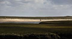 Figure on Beach (PAJ880) Tags: sandwich ma cape cod seashore marsh salt sky