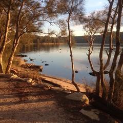 Narrabeen Lake (kityayma) Tags: narrabeen lake