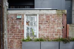 Chophouse Row 101616 (13) (TRANIMAGING) Tags: chophouserow architecture retrofit renovation capitolhill seattle
