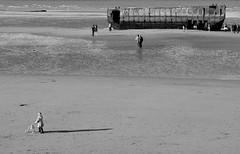 Un oeil sur le pass (Bluefab) Tags: poussette enfant phoenix dbarquement unesco dday arromanches maman plage sable jouet pass