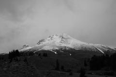 IMG_6438 (Brandi Bonde) Tags: mthoodnationalforest mthood summit peak snow trail hike
