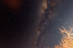 Milky way galaxy in all its glory - Hogsback South Africa (markdescande) Tags: night nature stars starfield darkness space star light background astrology outdoor dark astronomy sky backdrop nebula wallpaper universe black cluster galaxy creation abstract constellation hogsback easterncape southafrica zaf