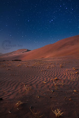 Beauty of the night (Ateyah J. Hujaili) Tags: sky night photoshop canon lens stars landscape sand exposure jay bluesky medina 1855 18 55 lightroom t3i exposures badr yanbu 600d     alhujaili ateyah ateyahjay