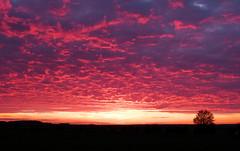 Sunset over Sandy, England, on the 4th may '13 (RLD73) Tags: uk sunset sky sun clouds lumix countryside view panasonic hertfordshire royston baldock fz150