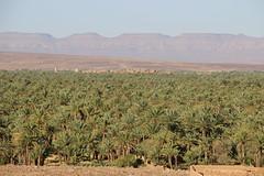 Marocco (Elidor) Tags: marocco aosi