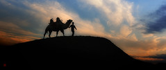 F_DSC9848-Nikon D90-Nikkor 16-35mm-May Lee 廖藹淳 (May-margy) Tags: silhouette desert camel xinjiang 新疆 剪影 駱駝 沙漠 魔鬼城 中華人民共和國 nikond90 devilstown nikkor1635mm 烏爾禾 maymargy peoplesrepofchina maylee廖藹淳 牧人與駱駝 ashepherdandhiscamel
