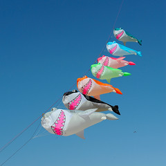 EnJoy the new week ! (Werner Schnell Images (2.stream)) Tags: kite festival shark kites week sharks hai oostende ws ostende haie 2013