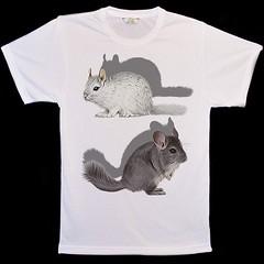 Animal Face T-Shirts (foxxy26) Tags: rabbit gerbil guineapig ferret feline hamster hamsters redsquirrel stoat cattshirts dogtshirts animalfacetshirts 3danimaltshirts wwwanimalfacetshirtscom animalfacestshirts puppytshirts kittentshirts