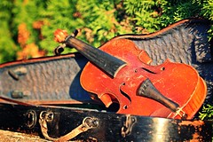 IMG_9758b - 11.09.2015 (hippo1107) Tags: violine geige musik instrument stillleben zahnderzeit antik alt canoneos650d canon eos 650d september 2015