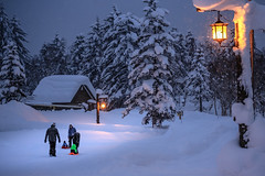 Asahidake Onsen (robertdownie) Tags: trees forest mountains winter cold japan white snow calm peace mountain ice wonderland hokkaido powder national park volcanic onsen tranquility hot spring asahidake taisetsuzan
