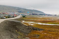 Arctic Tundra (danielfoster437) Tags: adventure arctic arcticcircle arcticsummer arctictundra extremeterrain landscape mountain nature outdoors spitsbergen summer svalbard svalbardsummer terrain tundra wilderness