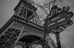Avenue Gustave Eiffel (lockechrisj) Tags: paris france eiffel tower eiffeltower parisfrance black white blackandwhite dof depthoffield canon teamcanon 6d l llens travel avenuegustaveeiffel gustave bnw theeiffeltower champdemars