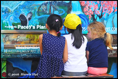 Let's Play Together - Richmond Maritime Festival N18013e (Harris Hui (in search of light)) Tags: harrishui nikond300 nikonuser nikon d300 vancouver richmond bc canada vancouverdslrshooter nikon85mmf18 piano streetpiano kids child letsplaytogether candid portrait streetcandid candidportrait britanniashipyard steveston
