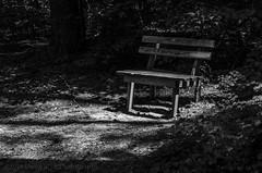 05/52c The Lonely Bench (Doug.Mall) Tags: dogwood52 52weeks apexcommunitypark bw challenge landscape photochallenge bench blackandwhite northcarolina usa