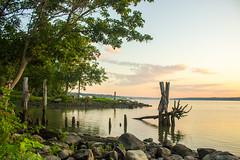 Good morning (Amy ::) Tags: odc morning plumpoint sunrise pilings hudsonriver
