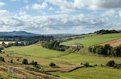 Rebuilt Scot No. 46100 'Royal Scot' - Borthwick Bank (Jonathon Gourlay) Tags: