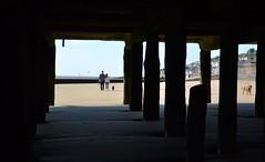 Dog Walkers under the Pier (Bazza3000) Tags: waltononthenaze beach dog pier walker dogwalker