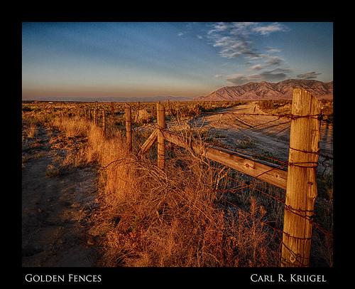 Golden Fences