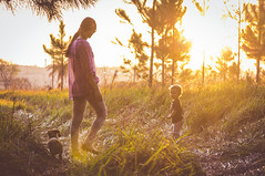 Golden moment. (Pablin79) Tags: field landscape girl boy sunset people nature sun tree dachshund dog grass woman animal mother colors green fun kid pet childhood outdoors afternoon vicente pines goldenhour teckel django dackel vini cintia