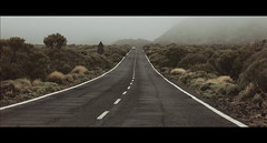 On the road (Kaip Kine) Tags: tenerife road fog mist ef100mm f28l canon 5dmarkiii cinematic tones cinema 2391 cinemascope bushes car