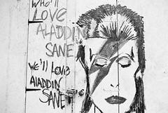 Bowie tribute Bradford. Canon ae1 #filmphotography #photography #blackandwhite #canonae1 #bowie #aladdinsane #tribute (amberstrawbridge) Tags: filmphotography photography blackandwhite canonae1 bowie aladdinsane tribute