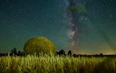 Harvest (free3yourmind) Tags: harvest milky way stars night sky belarus bale grass
