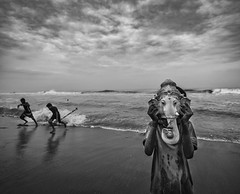 Play.. (nshrishikesh) Tags: cwc cwc552 ganesha visarjan wide angle street chennai weekend clickers marina beach indian festival photographer photography blackandwhite blackandwhitephotography monochrome dramatic god