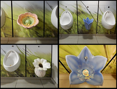 Garden Centre Urinals (foggyray90) Tags: stoneware toilet lavatory loo publictoilet littleboysroom gentlemans gents urinal