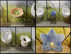 Garden Centre Urinals (foggyray90) Tags: stoneware toilet lavatory loo publictoilet littleboysroom gentlemans gents urinal