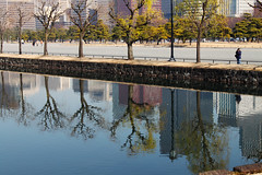 Thinking of Tokyo (jezselten) Tags: river trees city urban japan apalace asia tokyo concrete towers ank lines line walking man photo old history famous lucky rocks sparse empty space crowded reflection reflections branch leaf