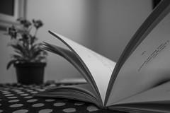 Leminskiando no fim da tarde (Mayara Sastre Capelozza) Tags: book flower poesia livro leminski