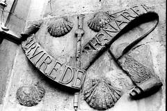 At the Musee de Cluny (EmperorNorton47) Tags: paris iledefrance france photo analog film autumn fall nikonn8008 nikonn801 fomapan100 blackandwhite museedecluny emblem sculpture relief