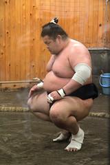 Arashio-beya | Sumo (Toni Kaarttinen) Tags: japan  japonia    jap japonsko jaapan  japani japon xapn    japn jepang an tseapin giappone  japna japonija  japo  japonska japn hapon  japonya nht bn tokyo tokio japanese sports sumo practise practice keiko wrestling sumowretling arashiobeya match win man men topless loin cloth loincloth chest stomach nibbles butt towels