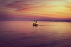 intrpido (oze-lito) Tags: velero intrpido boat navegando sailing mar atardecer estepona ozelito