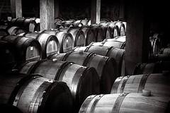 The Blood of the French (johnsinclair8888) Tags: vividandstriking barrels france johndavis nikon d750 wine blackandwhite bw monochrome travel affinityphoto drink cellar composition