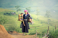 SSS_7334 (Bugphai ;-)) Tags: agriculture area asean asia asian bali banaue child china culture curve daughter delta developing enjoy ethnic family farm farmer field giang ha hani harvest hilltribe hmong home landscape lao life minority mother mountain national oriental paddy people plant poverty reservation rice rural sapa sewing terraces texture travel tribal valley vietnam
