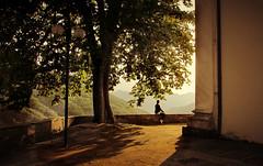 La mia terra non  solo mare ... (Augusta Onida) Tags: lorsica liguria italia ombra light luce shadow albero tree lampione lamp augustaonida contempalre tramonto sunset valfontanabuona