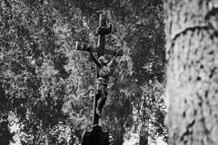 Cemetery cross (freestocks.org) Tags: antique background bible blackwhite blackandwhite catholic celebration cemetery christ christian christianity church cross crucifiction crucifix crucifixion education face faith god gospel grave graveyard history holy hope icon jesus life old outside prayer praying religion religious resurrection sky spiritual statue symbol trees