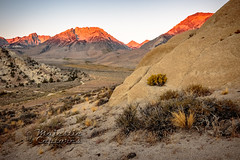 Sep-16-Buttermilk Hills-015-HDR (Majestic Captures) Tags: 2016 alpenglow bishop buttermilk california hills sunrise waterfalls camera:model=canoneos7dmarkii camera:make=canon exif:focallength=18mm geolocation exif:isospeed=200 exif:model=canoneos7dmarkii exif:lens=1835mm exif:aperture=16 exif:make=canon