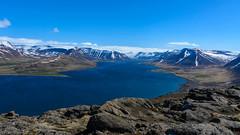 Dyrafjodur fjord (donhall9141) Tags: 201605icelandcruise iceland phototype 2016 landscape isafjodur