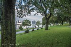 _DSC4439 (Sharon C Seguin) Tags: sculpturegarden skyline wwpw2016