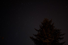 Night Shots From Cypress Lookout (stephenwilley) Tags: astrophotography cypressmountain cypress stars trees