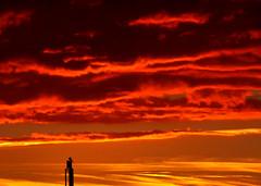 2016-09-05 (Gim) Tags: kbenhavn kpenhamn copenhagen copenhague kopenhagen amager sunset solnedgang solnedgng coucherdesoleil hovedstaden sjlland sjlland zealand danmark denmark danemark dnemark gim guillaumebavire